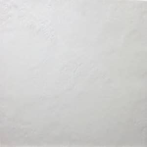 Glacier White tiles