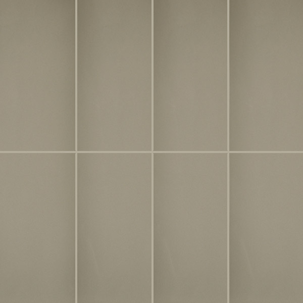 Long Warm Grey Gloss Wall tiles 200x600